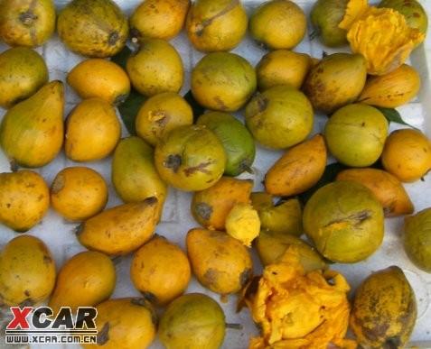 海南美食 水果篇