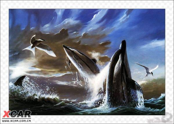 野生动物水彩画(43/105)