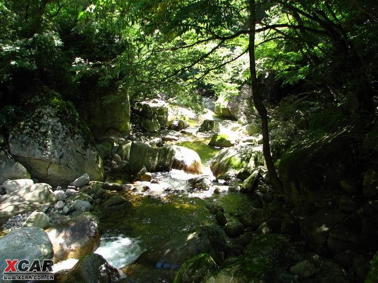 太白山森林公园自驾游