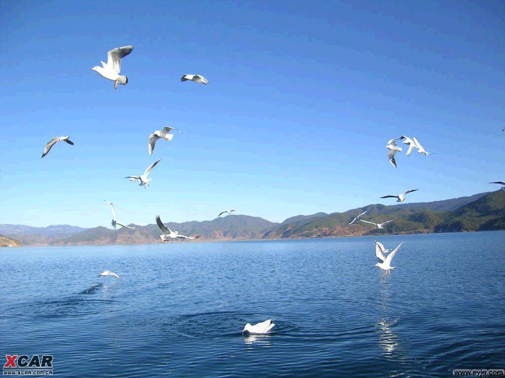 速腾 青海湖,敦煌自驾游记 - 酷走旅游网