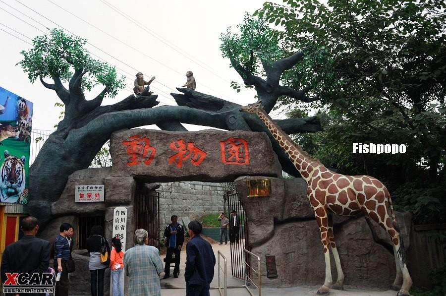 自贡的动物园其实就是彩灯公园里的一部分