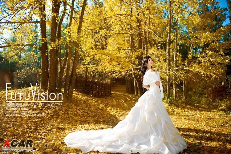 壁纸 风景 婚纱 婚纱照 森林 桌面 750_500