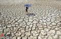 印度遭遇50℃高温天气致近300人被热死