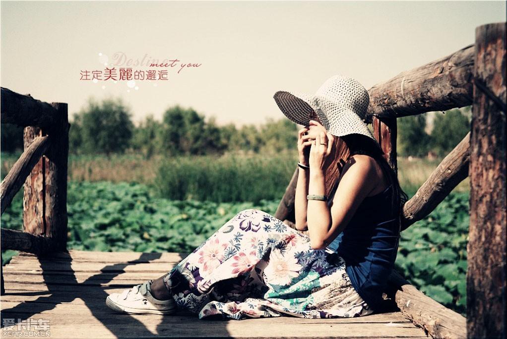 q游青城荷花池拍人像 ps 荷花 荷叶.