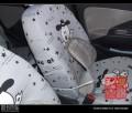 瑞麒M1 1.0手豪版车内外装饰(多图)