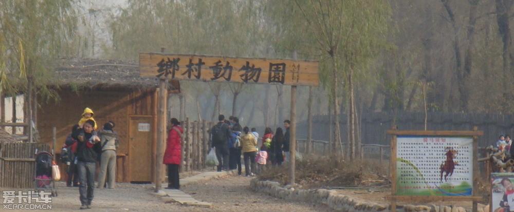 *** 陪孩子北京洼里乡村动物园半日游 ***
