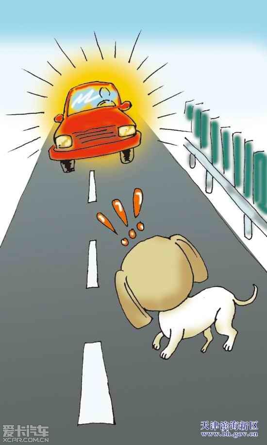 动物头像做标志的车系