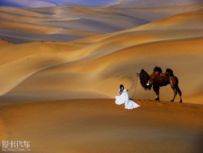 沙漠女人 大庆论坛