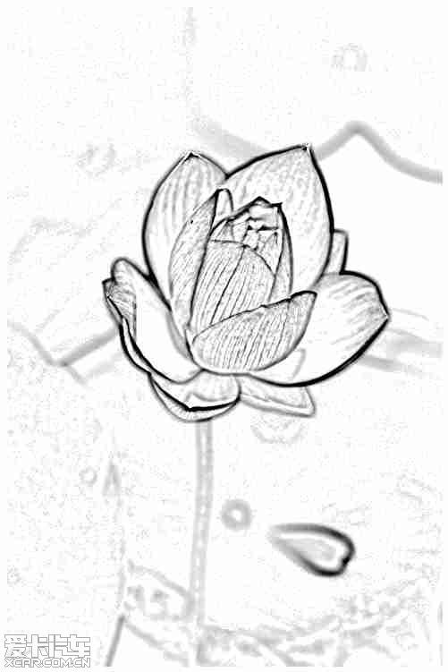 简笔画 手绘 线稿 501_751 竖版 竖屏