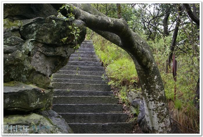【精华】吴家山森林公园(此吴家山在湖北黄冈英山
