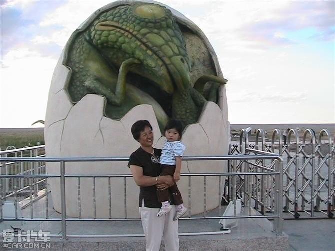 有了这窝恐龙蛋才能证明恐龙是卵生的,不是哺乳动物.