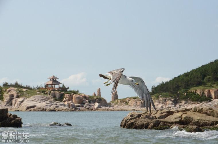 发现长岛--悠哉悠哉的海岛(持续更新中,多美图