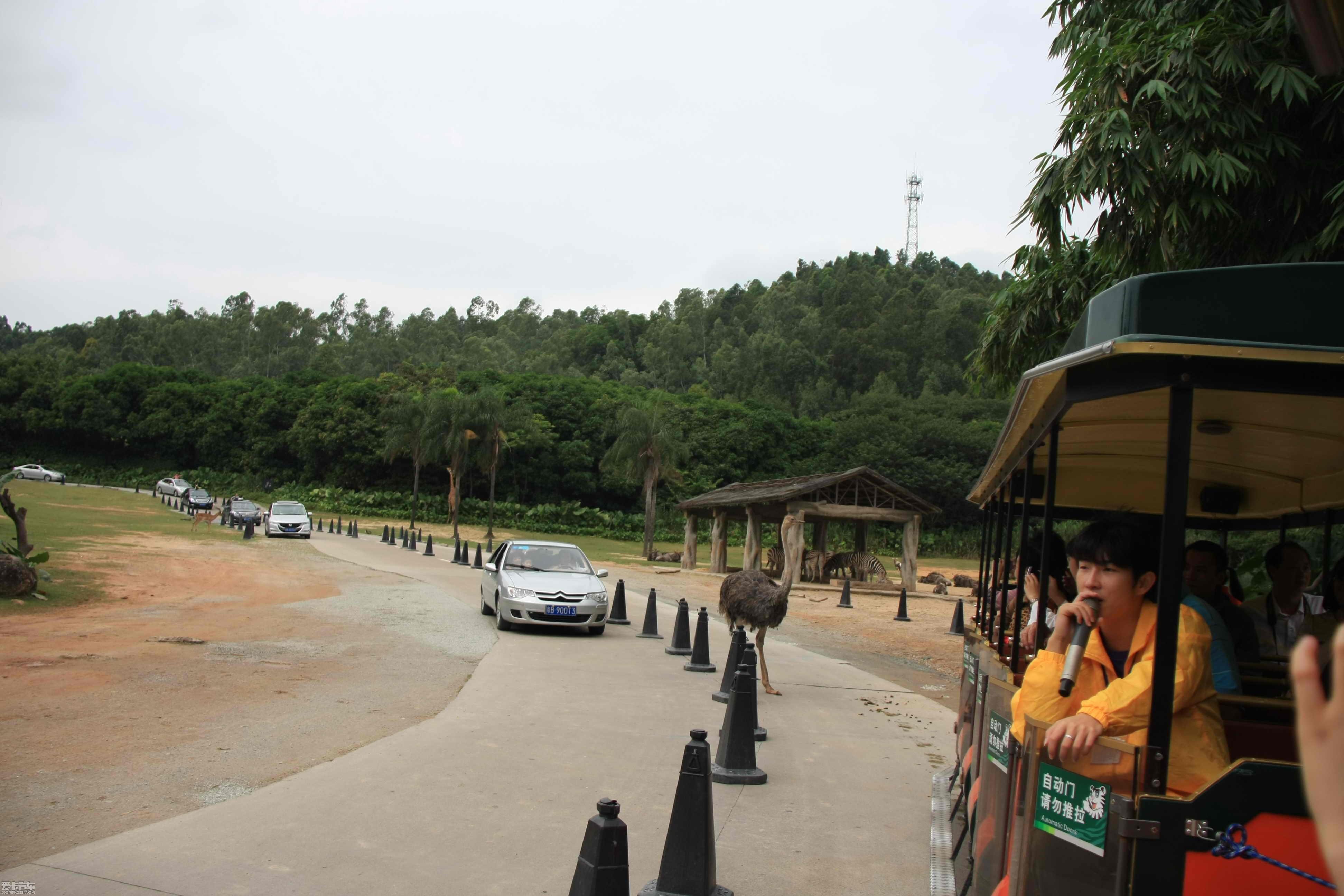十一长假广州长隆旅游----野生动物园:)