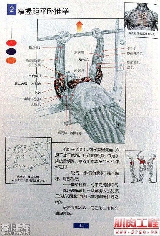 握力器肌肉锻炼图解握力器图解肌肉锻炼方法图解