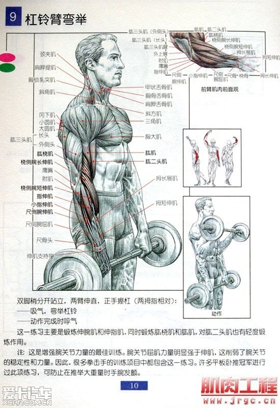> 肌肉锻炼图解! 男人必看!