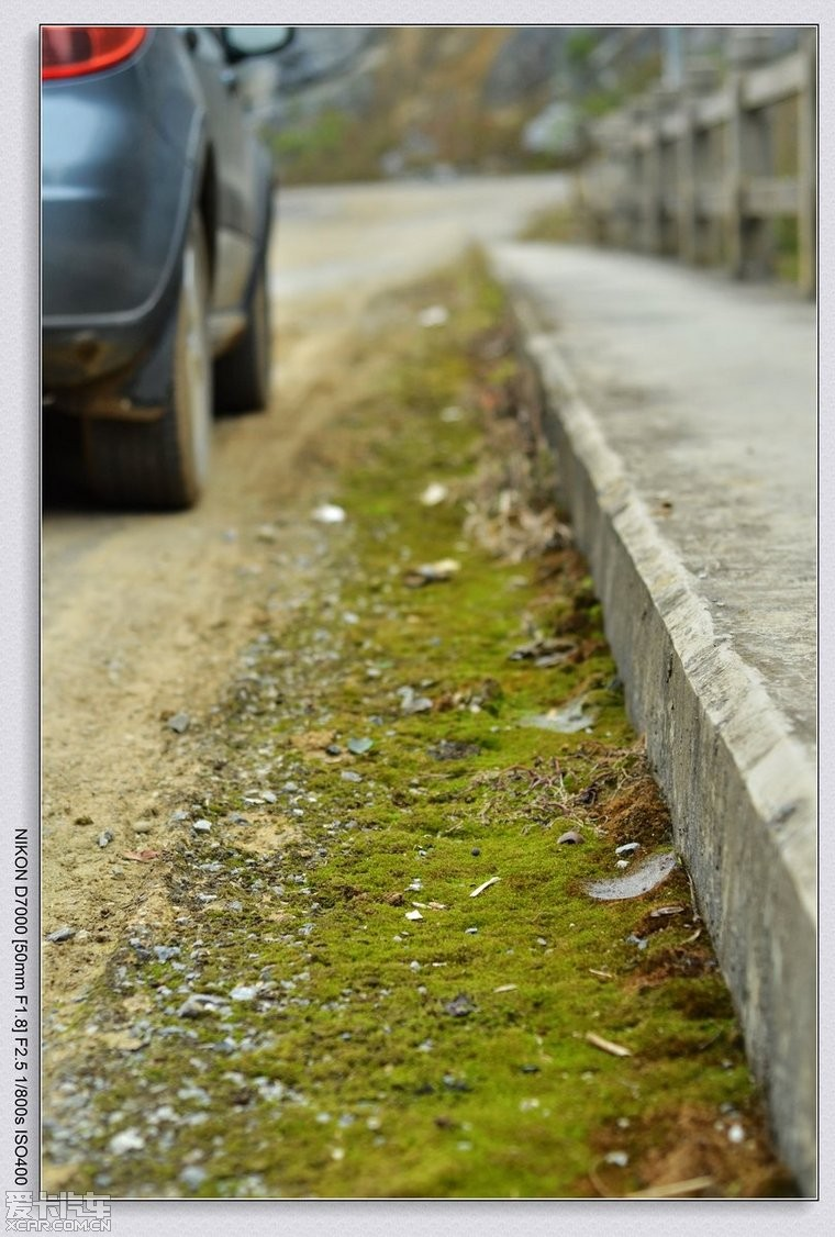 路边没有人践踏的地方就长满了青苔或小草,给弯弯曲曲的小路镶上绿边