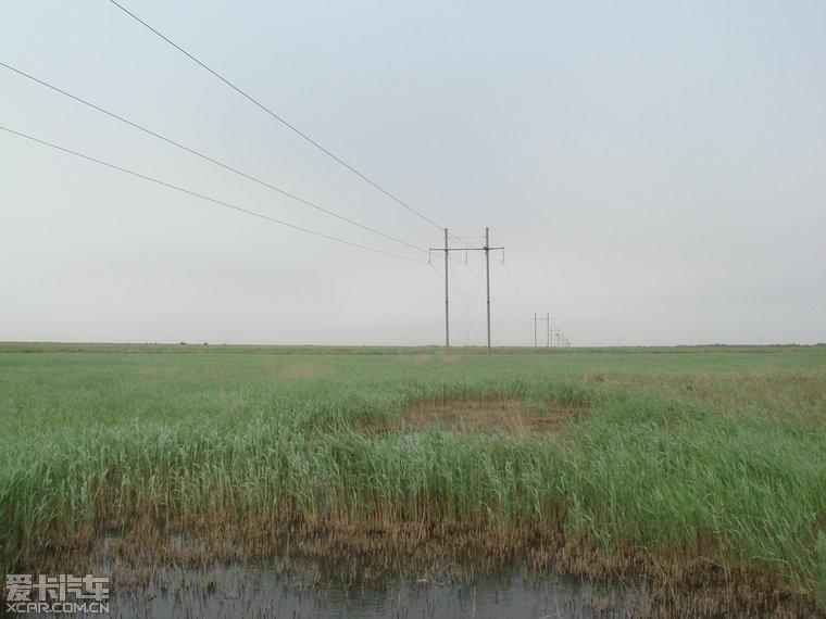 办公室/黄河口湿地
