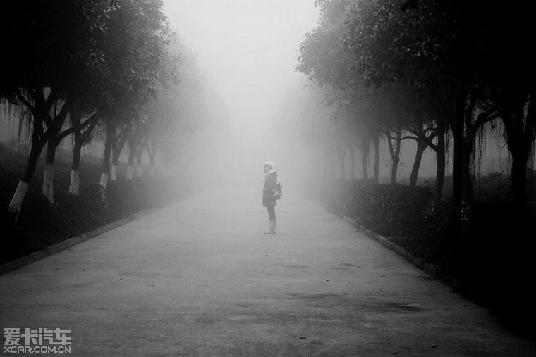 4973,望着,远去的背影...(原创) - 春风化雨 - 诗人-春风化雨的博客
