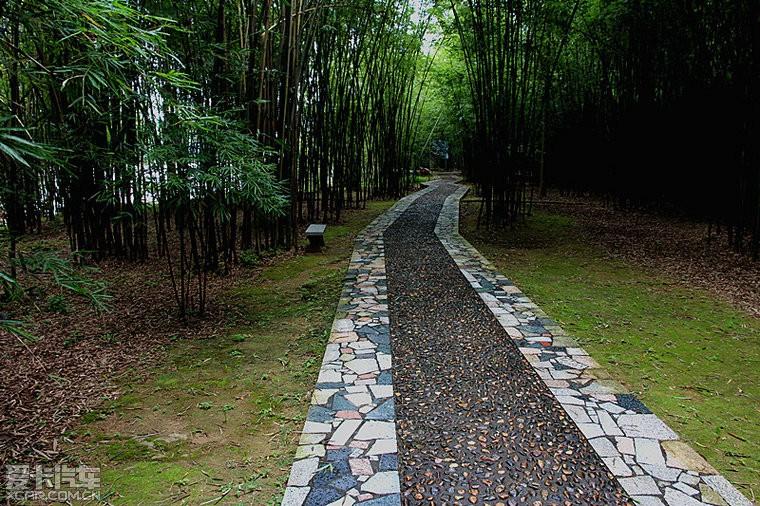 > 广宁竹海国家森林公园