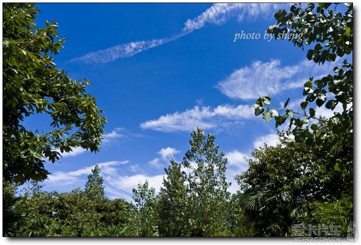 蓝色天空下的秦岭野生动物园