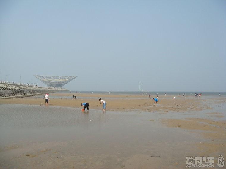 海滩上,好多人在抓小螃蟹