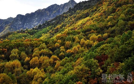 体验秋天,怀柔喇叭沟门原始森林之行精华
