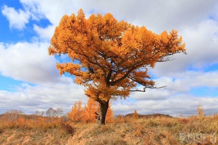 信息中心 秋景散题   秋景散题(图1) 湘江秋景图散文一个人站在高高的