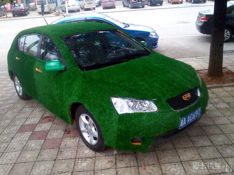 比我的瑞虎车顶长草牛多了,这车全车都长草了