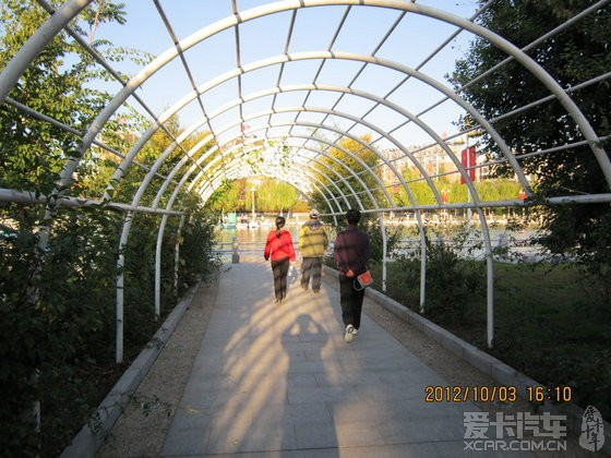 绣龙森林公园图片欣赏