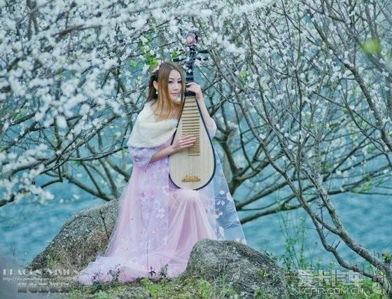 美女 琵琶