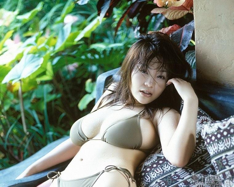 松金洋子种子 松金洋子图片 松金洋子太阳之跃动 松金