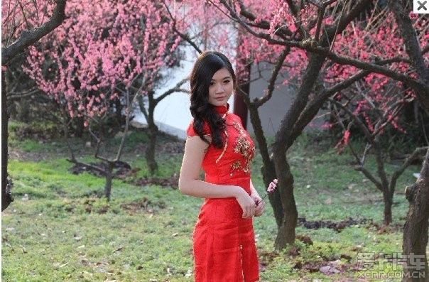 东湖的梅花绽放与美女