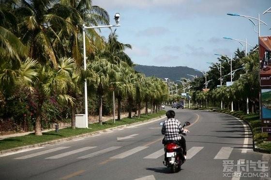 进入亚龙湾度假村,道路很干净,路旁的行道树都是椰子树.