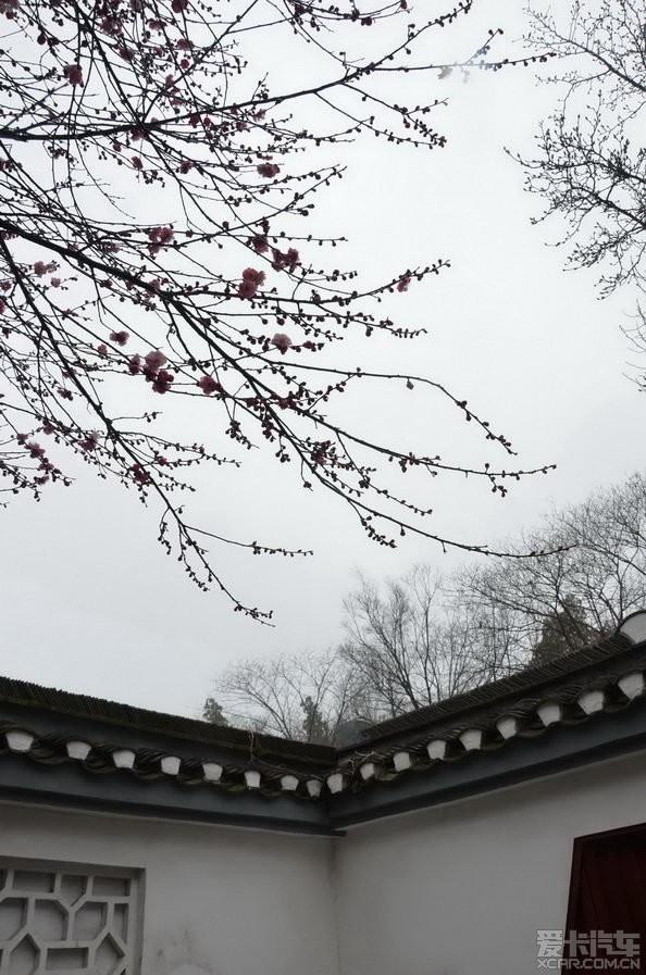 江浙沪_江浙沪地图_江浙沪旅游地图(2)