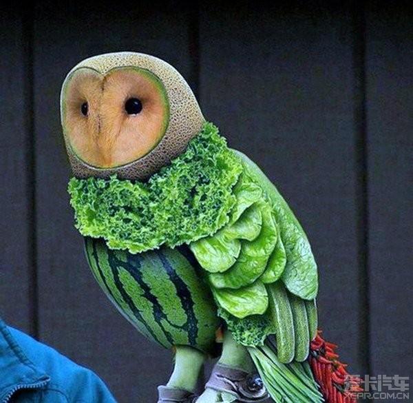 动物做�_> 维妙维肖的蔬果艺术[动物造型]