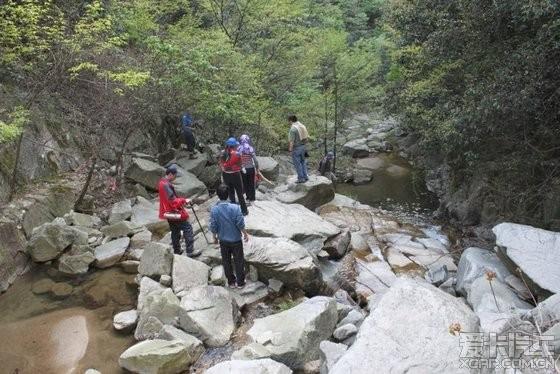 蕲春县太平森林公园精华