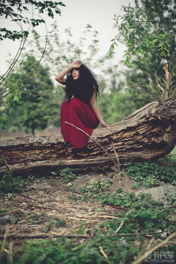 复古系的红裙美女 枯木林写真