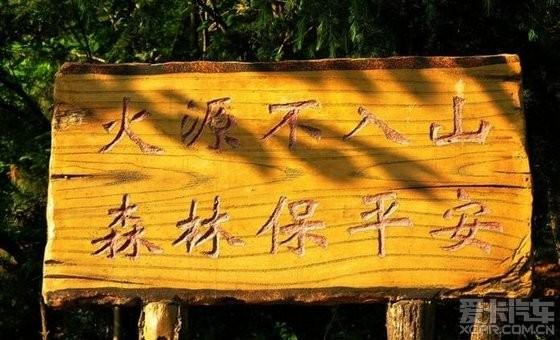 城市之肺--------青岛北岭森林公园游记