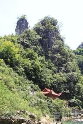 【图】黄山绥阳遵义树生态旅游风景区一日游_安徽红果攻略自驾游周边图片