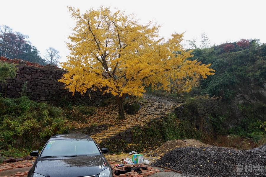 为黄而去--连续四周神游四明山、茅镬之四_宝英战吕攻略普通三布图片