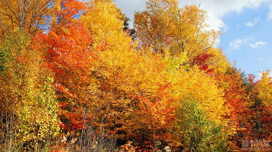 > 枫叶的故乡---加拿大的美景图片