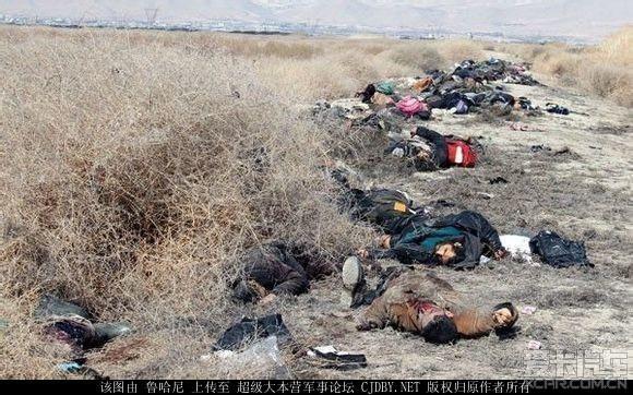 叙利亚政府军昨天一次伏击消灭掉175名反政府