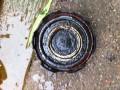 polo1.4更换油水分离器,并清洗了旧的油水分离器。