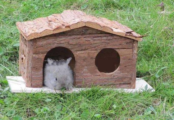 寓言故事----动物王国    在动物王国里,兔子每个月的工资是5000元,兔子打算用20万元建一个兔窝。但狼不允许,说私自建就是违章建筑,只允许兔子向搞房地产的王八买。   王八是搞房地产的,先用20万元贿赂狼取得了开发权,再用50万元向狼买这块地,投资10万元把兔子窝盖好,然后向兔子要价200万元。   兔子拿不出这么多钱,于是向狐狸借了200万元的高利贷,连本带利300万元,20年还清。兔子全家20年给狐狸打工。   结果,狼、狐狸、王八都挣了钱,只有兔子亏,连孩子也不敢生了。   由