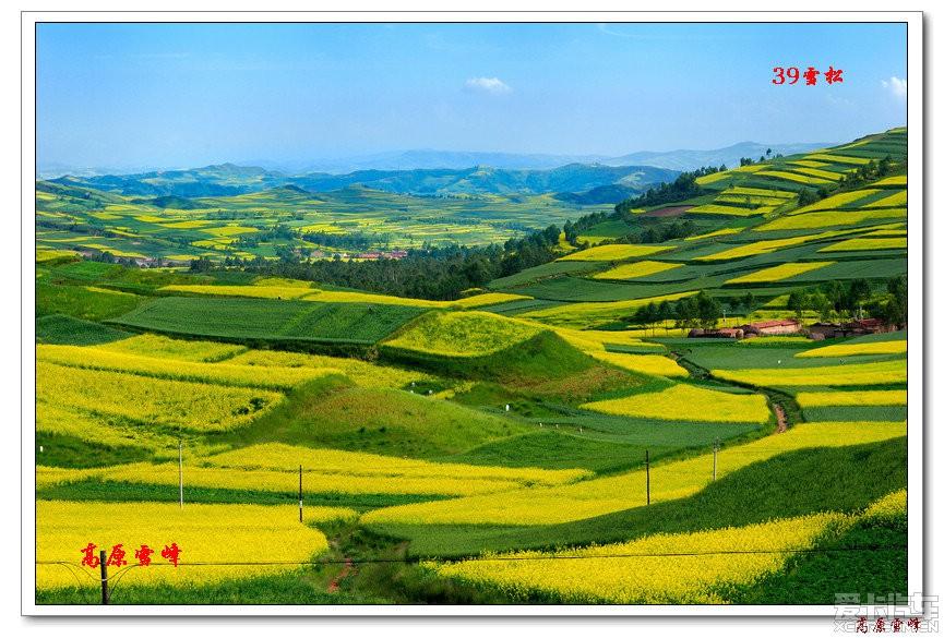2014年8月2日互助县一日游(续二)_青海论坛_科技攻略1.23小偷图片