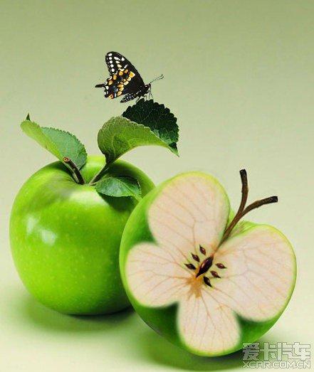 最近发现了一些蔬菜水果做的小动物,特别可爱,给大家分享一下!