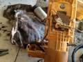 开迪更换汽油泵作业;顺卖碳罐一个