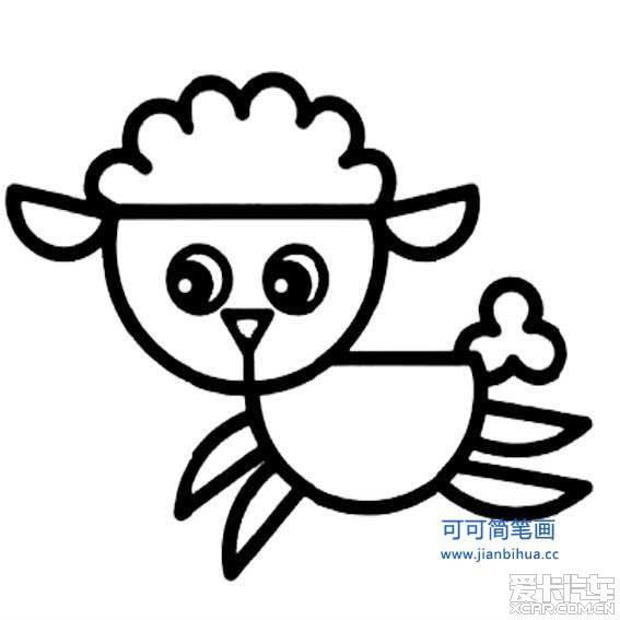 有颜色小动物简笔画