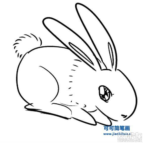 简笔画小动物_摄影部落