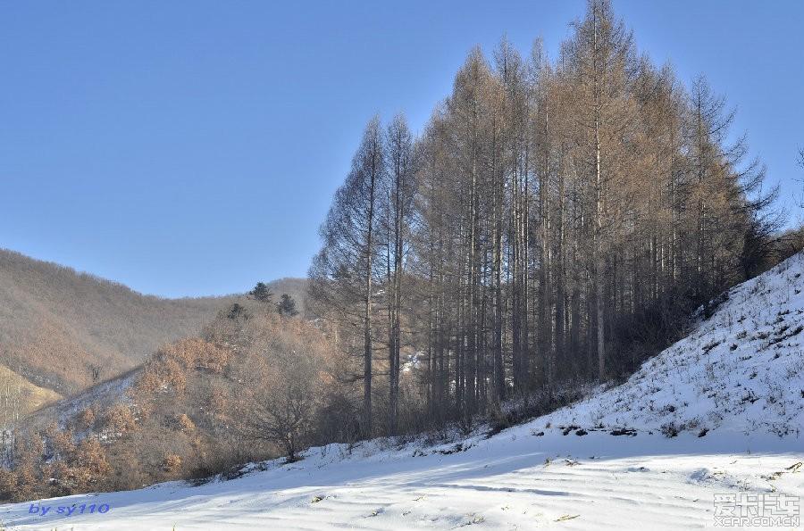 冬日奇景冰瀑布